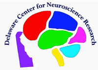 Delaware Center for Neuroscience Research